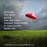 red_umbrella_right_quote